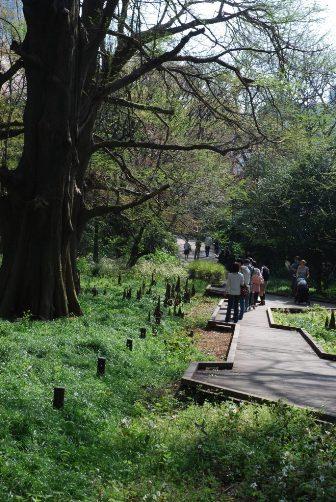 201004母と子の森