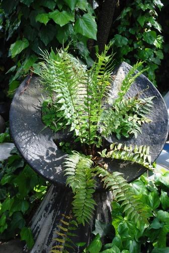201005植木鉢①