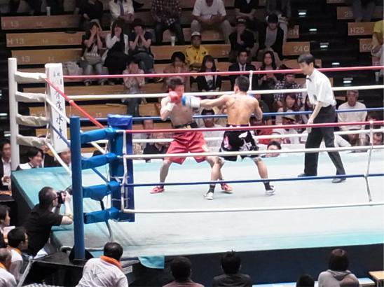 boxing 023-1