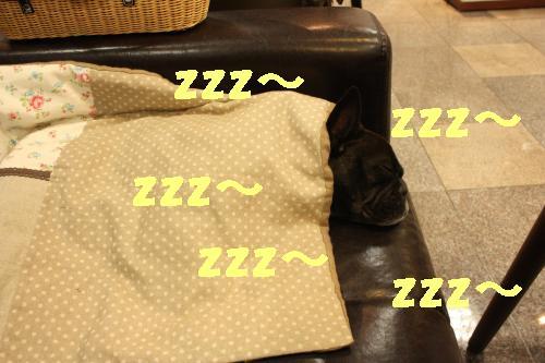 IMG_4239_convert_20110802215740.jpg