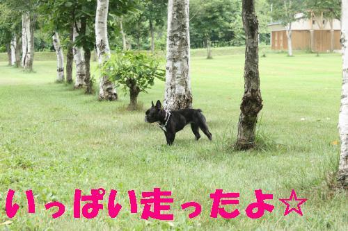 IMG_4267_convert_20110806161318.jpg