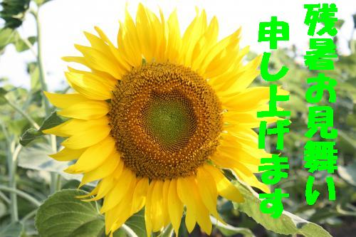 IMG_4399_convert_20110812235715.jpg