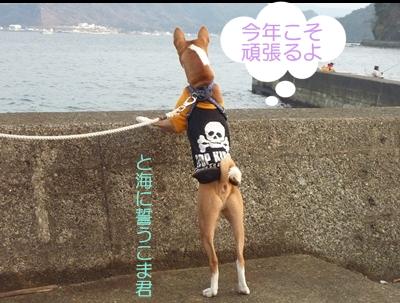 箱根駅伝2012001
