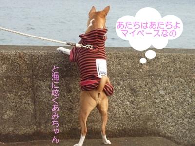箱根駅伝2012010