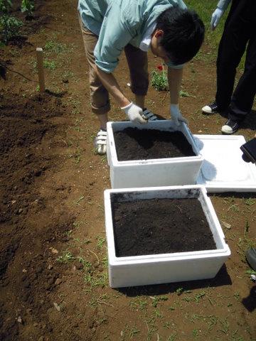 肥料を混ぜます。