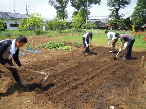 最後に人手で肥料を混ぜ込みます。