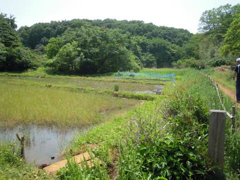 お昼準備の間に数人で近くの菩提樹池へ。
