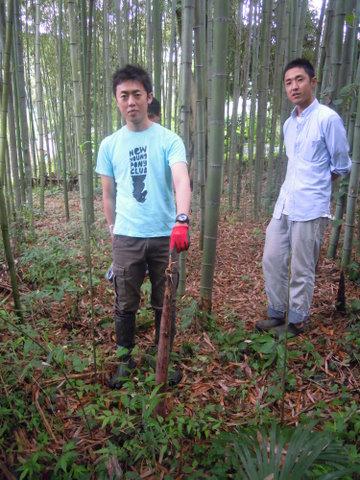 真竹の筍ってこんなんなのね。