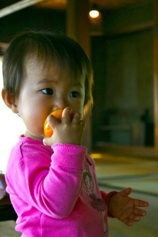 柿えらび2