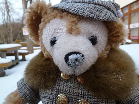 雪好きクマ