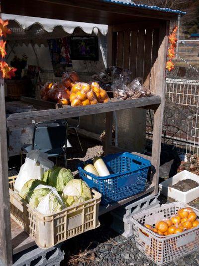 柿の木坂の家 野菜販売