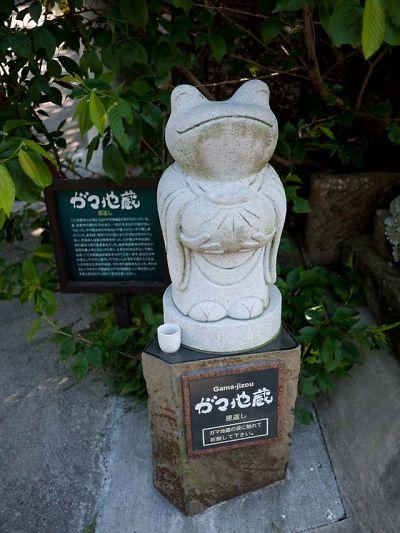 慈雲寺 がま地蔵