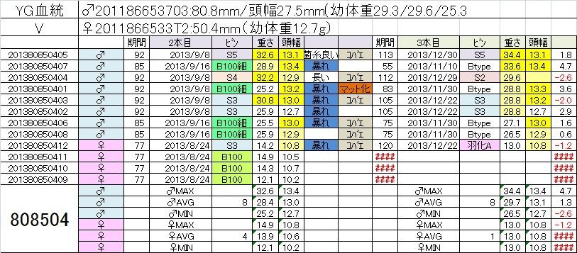 2013808504 3本目