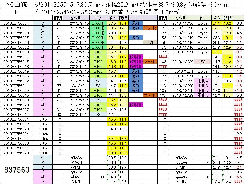 2013837560 3本目