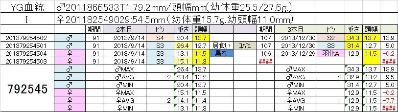 2013792545 3本目