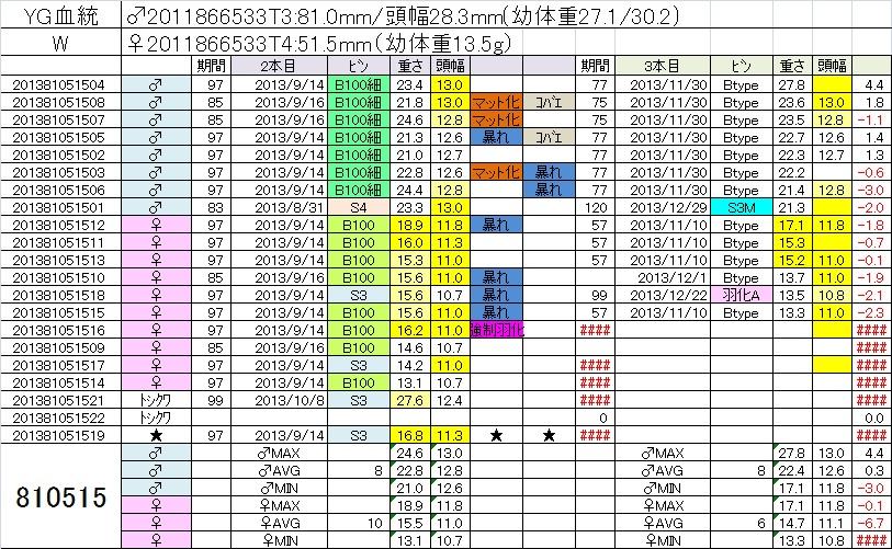 2013810515 3本目