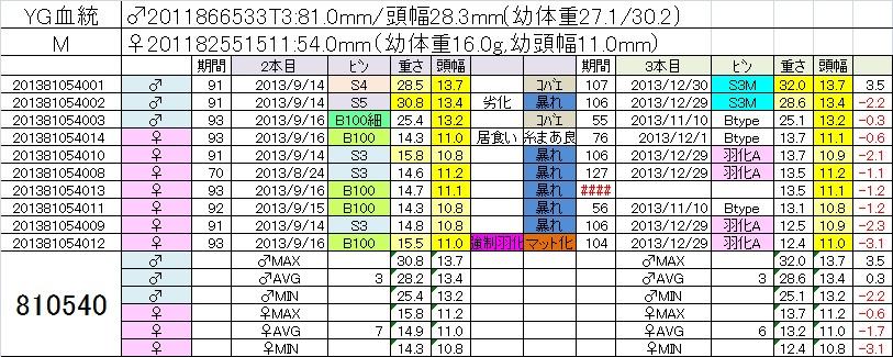 2013810540 3本目