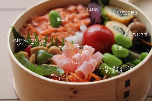 鶏肉カシューナッツ炒め弁当2