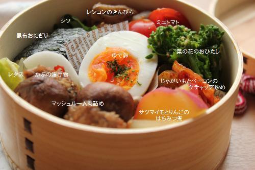 マッシュルーム肉詰め弁当2