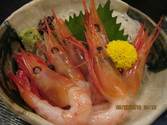 Japan 2010 nao 124