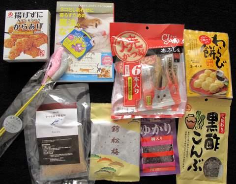 Japan 2010 230-1