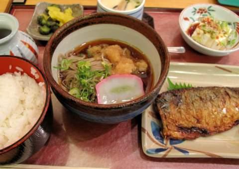 Japan 2010 500