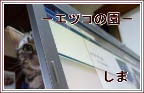 しま(ゴシック)