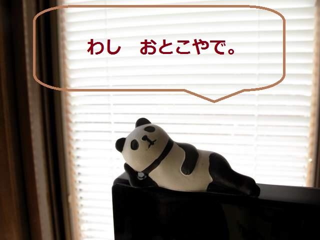パンダおっさん説