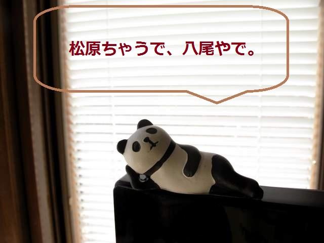 パンダ語録 松原