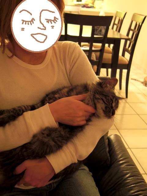 2011-12-01maiami 054 maki
