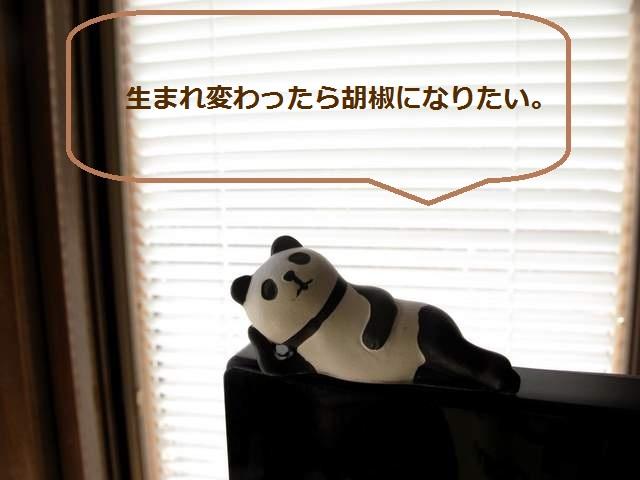 パンダふきだし 胡椒 タラヲ