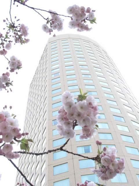 04-12 Japan 2076