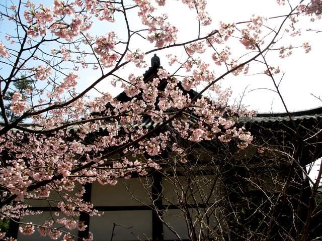 04-12 Japan 824
