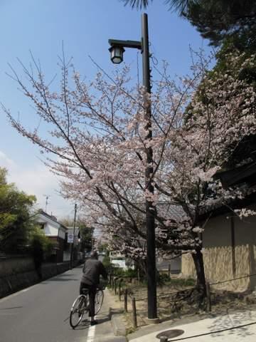 04-12 Japan 846