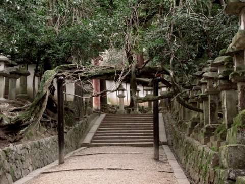 04-12 Japan 943