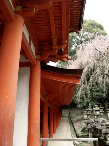 04-12 Japan 962