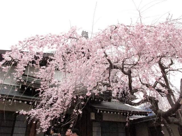 04-12 Japan 990