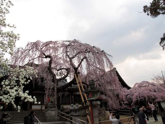 04-12 Japan 999