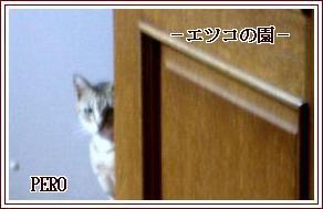 Qx3hE.jpg