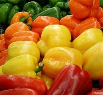 bell-pepper-9831.jpg