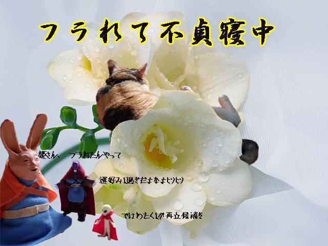 nemurihime_ouji_again1.jpg