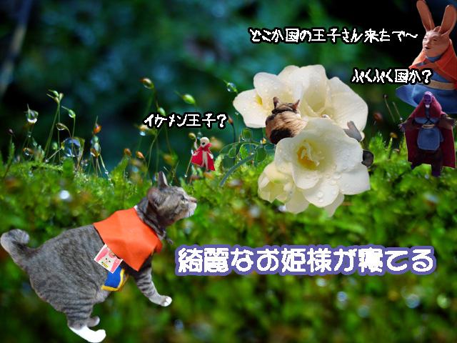 prince_deai.jpg