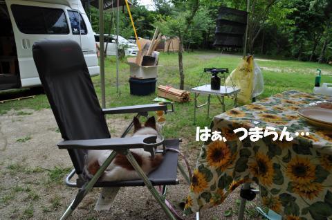 DSC_0001_convert_20130701135926.jpg