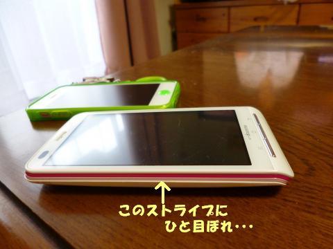 P1000969_convert_20130318101810.jpg