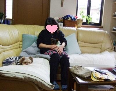 2011_02170013.jpg