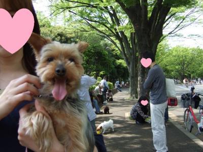 2011_05080017-1.jpg