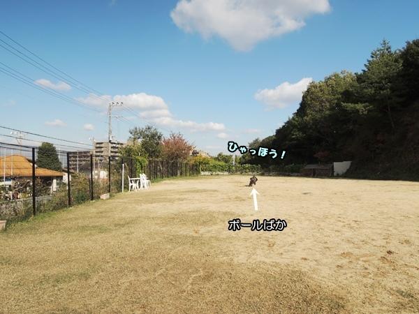 DSCN710020131122.jpg