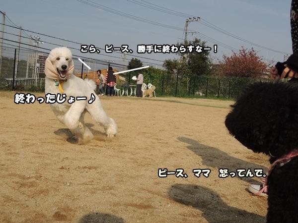DSCN713820131126.jpg