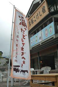 2011ポケットこけし02