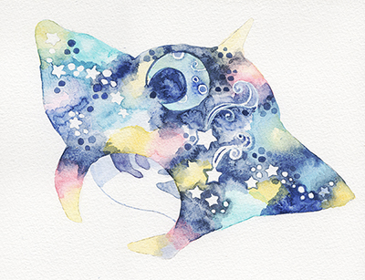 魚シリーズ マンタ